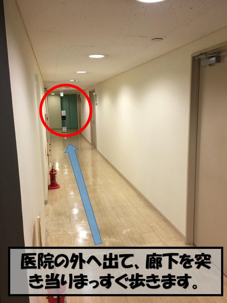 トイレの廊下