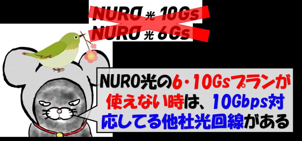 NURO光10Gs未対応の場合