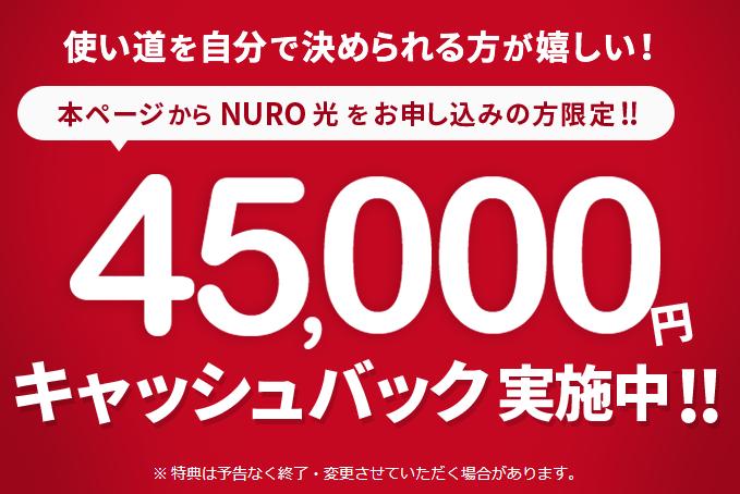 NURO光公式特設サイト45,000円
