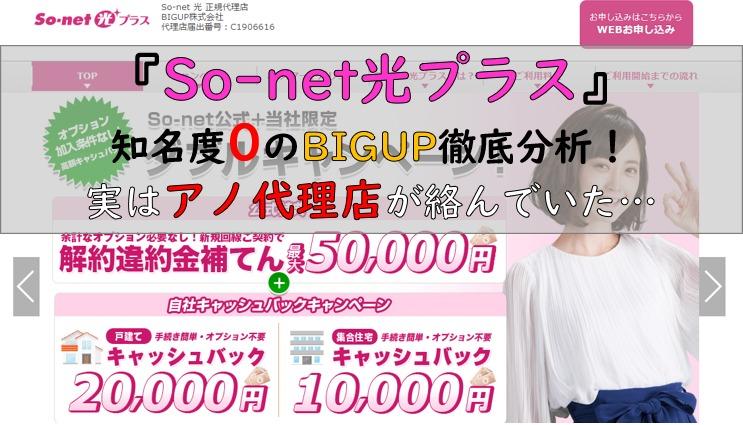 BIGUP×So-net光プラス